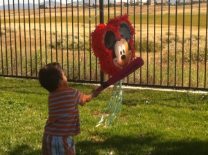 little boy hits pinata