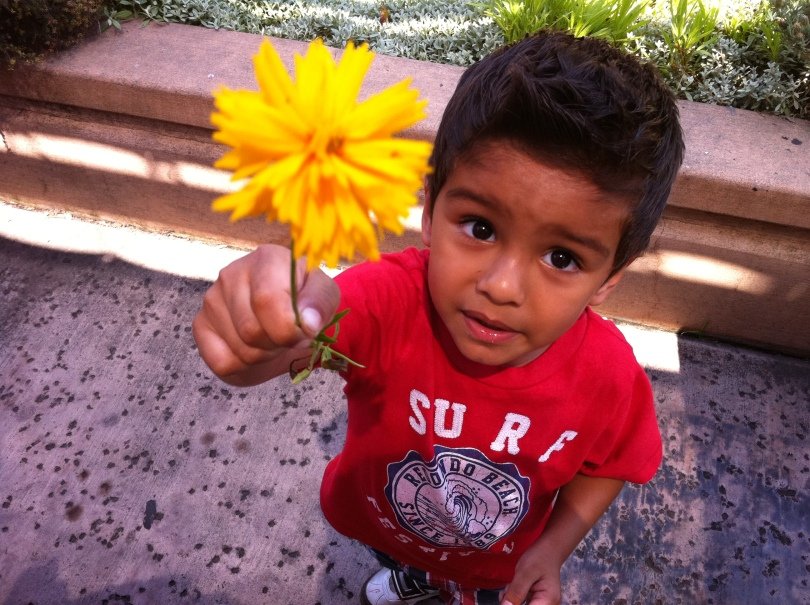 boy gives mama flower